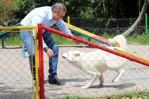Edson Néspolo pede carretas sem foguetes em respeito aos animais
