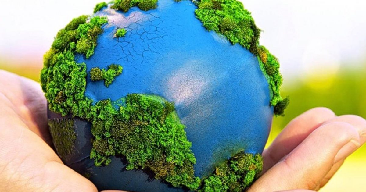 tudo sobre o meio ambiente